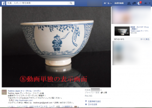 8 Facebook上での動画 View
